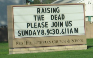 Image result for raising the dead