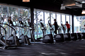 Gym Cardio Area Overlooking Greenery